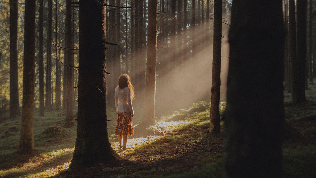 lone woman standing in sun ray surrounded by dark forest